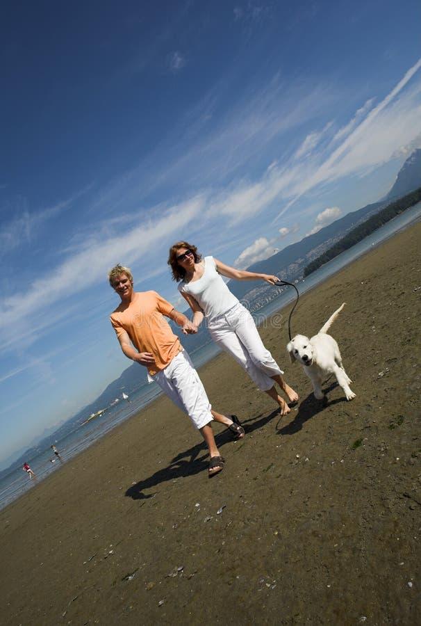 Jong Paar Op Het Strand Gratis Stock Foto's