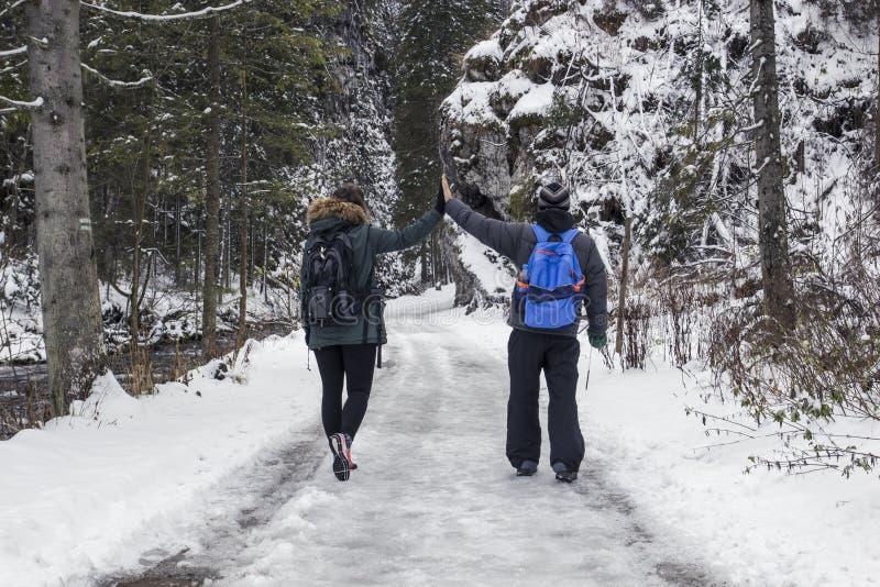 Jong paarkerel en meisje die in snow-covered bosamo lopen royalty-vrije stock afbeeldingen