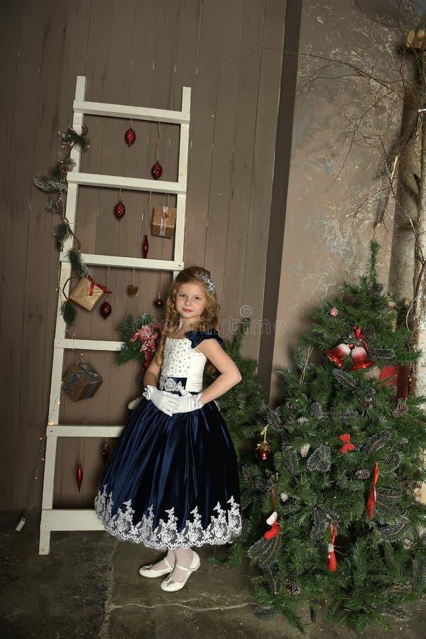 Jong prinsesblonde met een mooi kapsel, royalty-vrije stock foto
