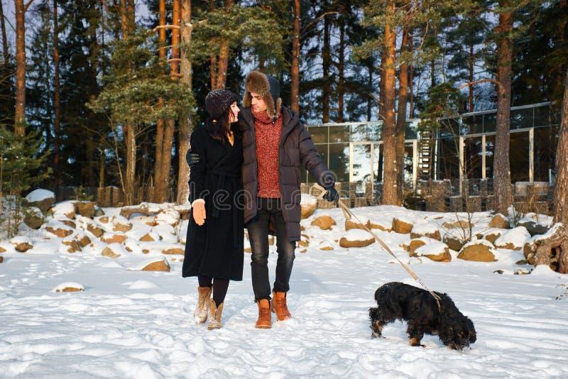 Jong teder paar die in liefde in de winterpark lopen met hond stock fotografie
