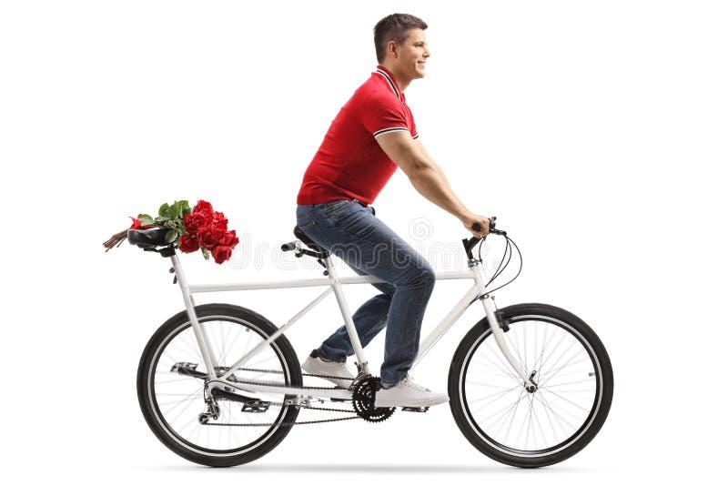 Jong vrolijk personenvervoer een fiets achter elkaar en dragende rode rozen op de achterbank stock afbeeldingen