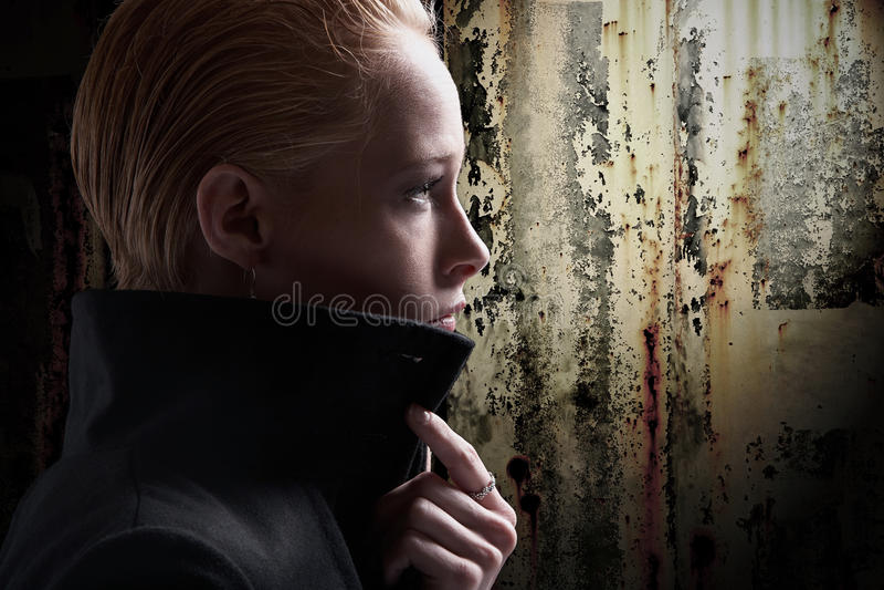 Download Jong vrouwenprofiel stock afbeelding. Afbeelding bestaande uit up - 29514683