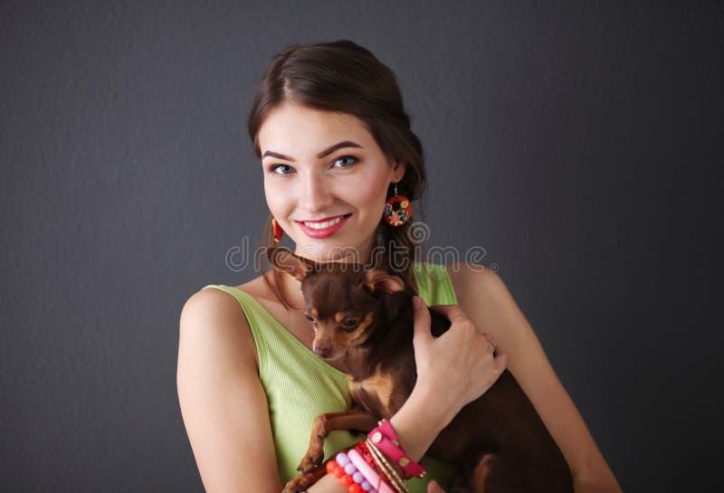 Jonge aantrekkelijke de hondchihuahua van de vrouwenholding, op grijze achtergrond stock afbeeldingen
