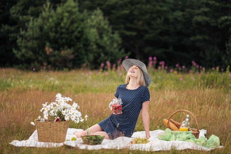 Jonge aantrekkelijke vrouw in een blauwe kleding bij een openluchtpicknick Een mand met madeliefjes, watermeloen, aardbeien en ee royalty-vrije stock foto's