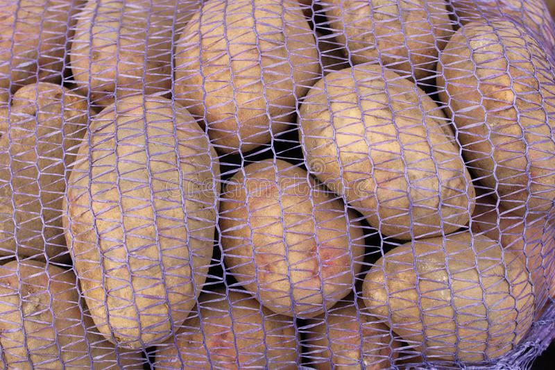 Jonge aardappels die voor pastei of compote zullen worden gebruikt of zullen gebraden worden als gebraden gerechten stock afbeelding
