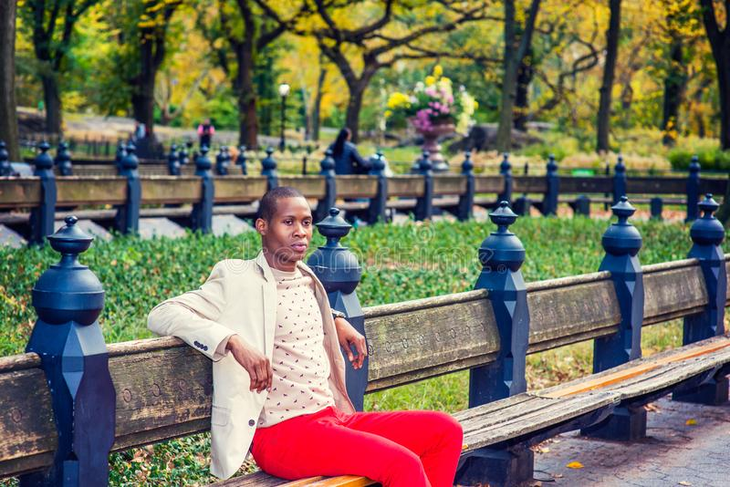 Jonge Afrikaanse Amerikaanse Mensenzitting op bank, die in Centraal ontspannen stock fotografie