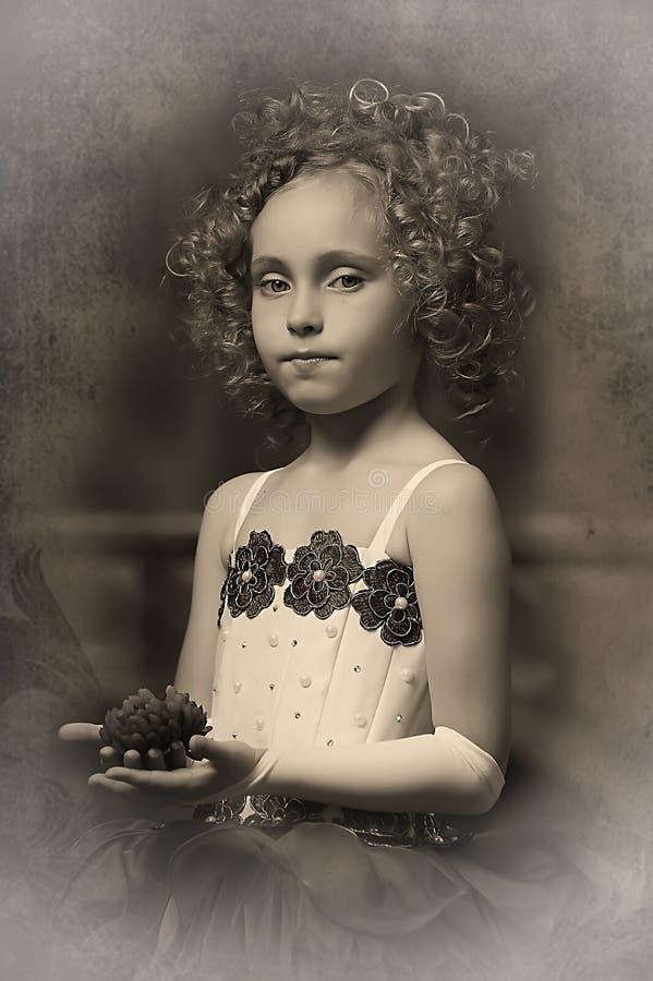 Jonge aristocraat stock foto