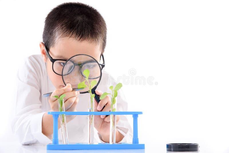 Jonge Aziatische de installatiezaailing van de jongenscontrole in laboratorium royalty-vrije stock afbeelding