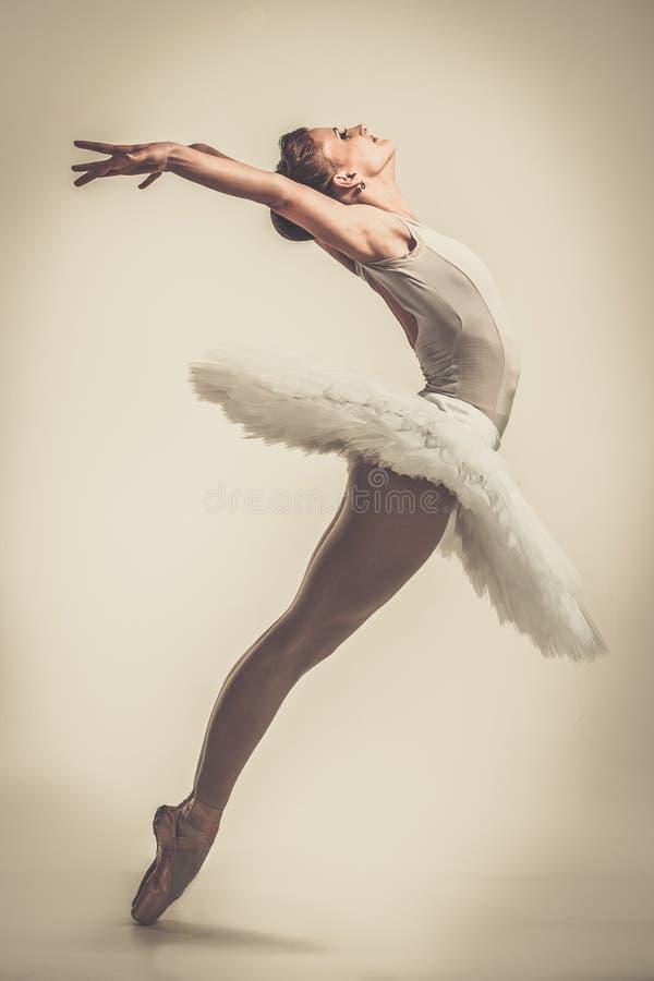 Jonge ballerinadanser in tutu stock afbeeldingen