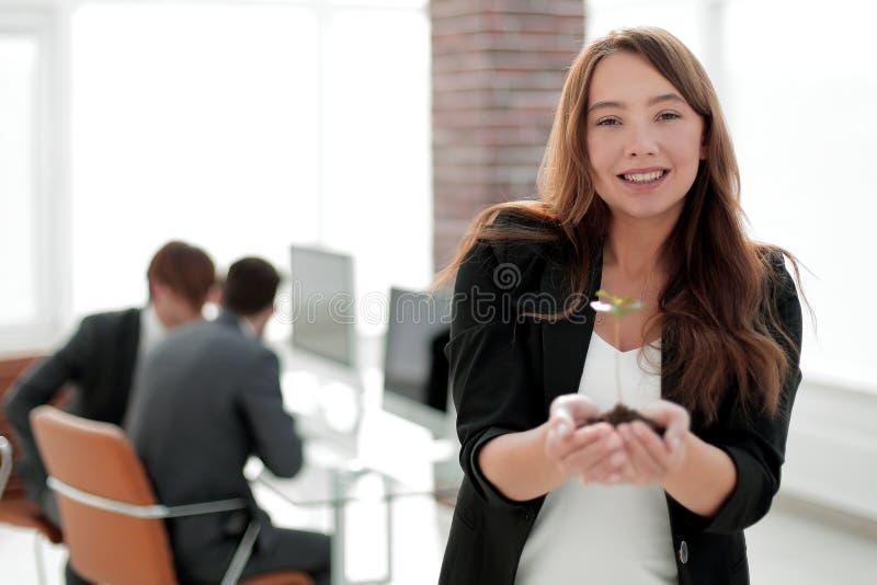 Jonge bedrijfsvrouw die een verse spruit houden stock afbeeldingen