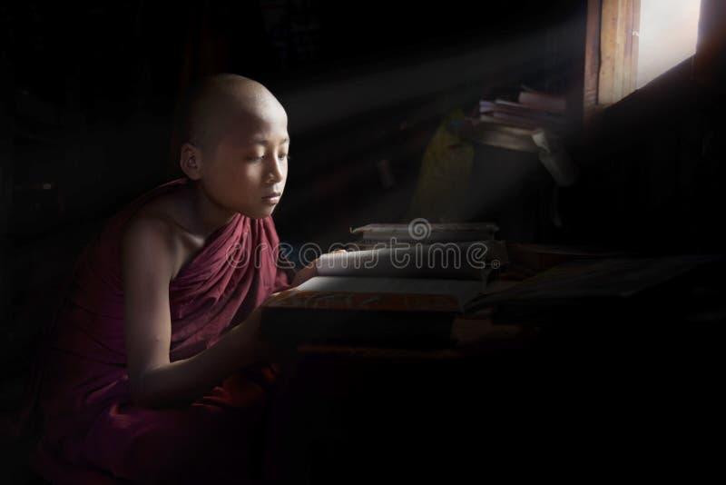Jonge beginnermonnik die naast een venster bestuderen royalty-vrije stock foto