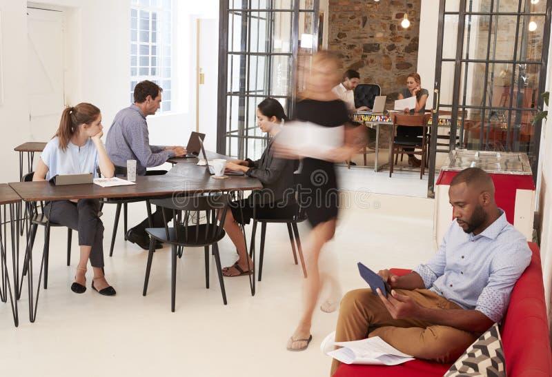 Jonge beroeps die in een bezig open planbureau werken stock foto's