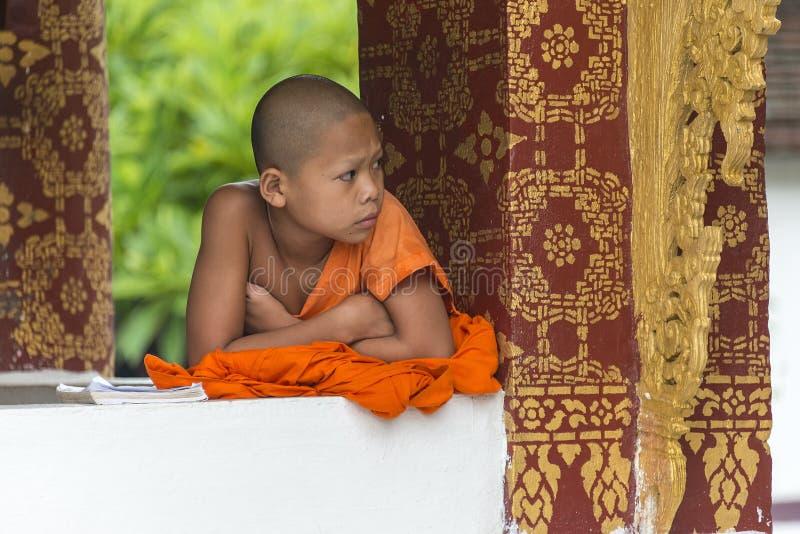 Jonge Boeddhistische monnik in tempel stock foto's