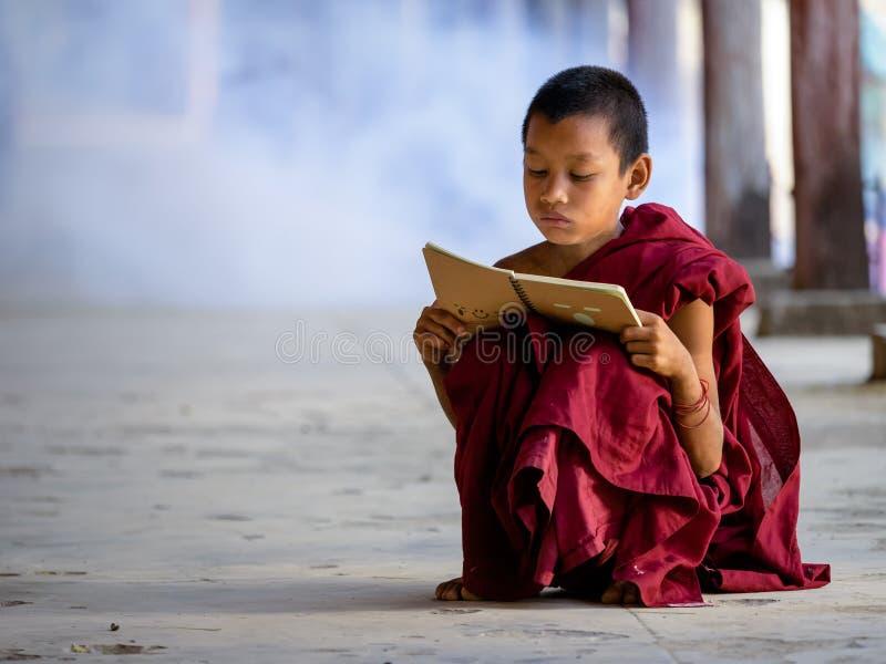 Jonge Boeddhistische monnikslezing in tempel stock fotografie