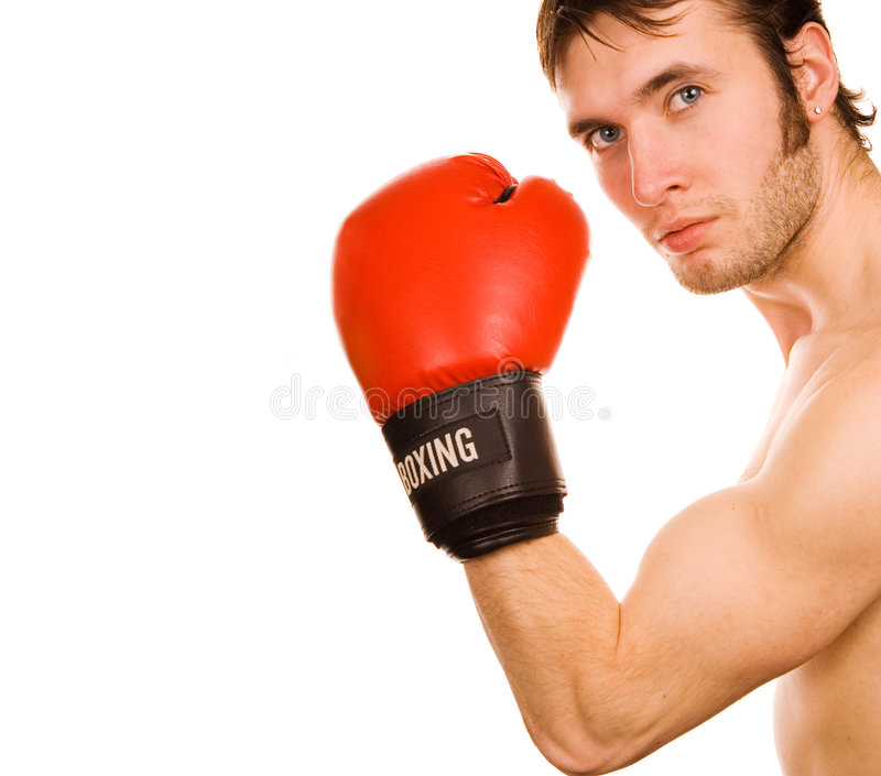 Jonge bokser royalty-vrije stock afbeelding