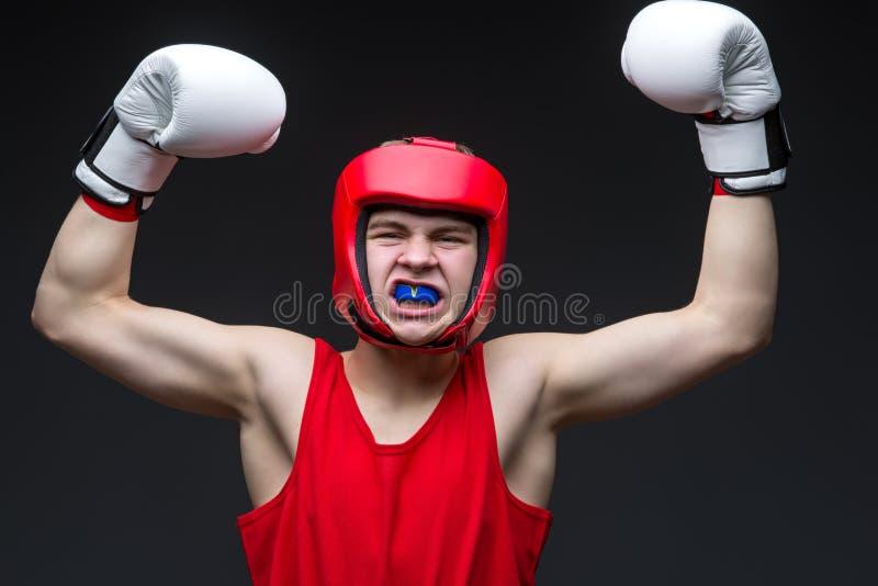 Jonge bokserwinnaar stock foto's