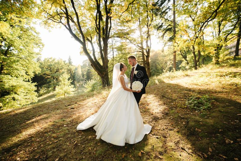 Jonge bruidegom loopt in het bos Woman met lange witte jurk en man in zwart pak met das stock fotografie