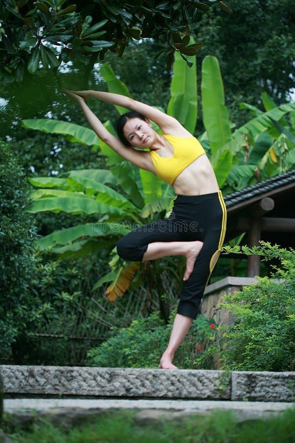 Jonge Chinese vrouw het praktizeren yoga openlucht royalty-vrije stock foto