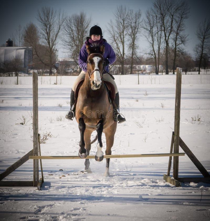 Jonge dame die haar paard in de winter springen stock fotografie
