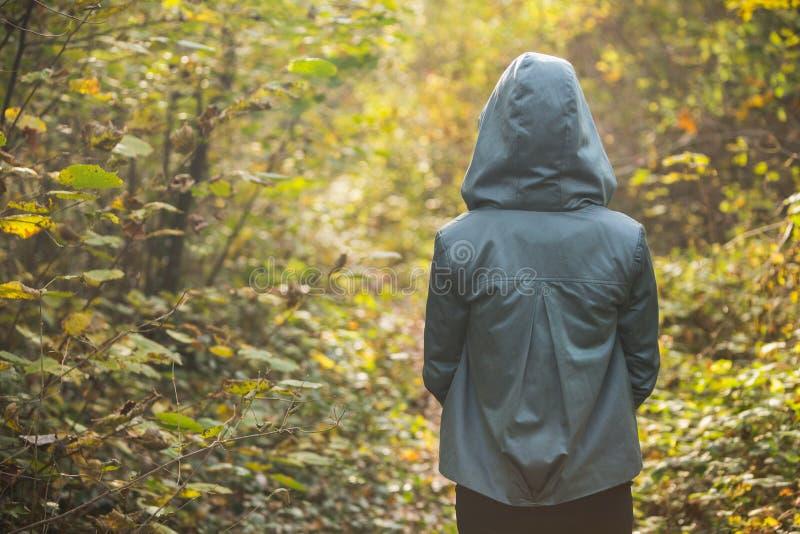 Jonge dame van erachter in jasje die met een kap zich alleen in de herfstbos bevinden stock fotografie