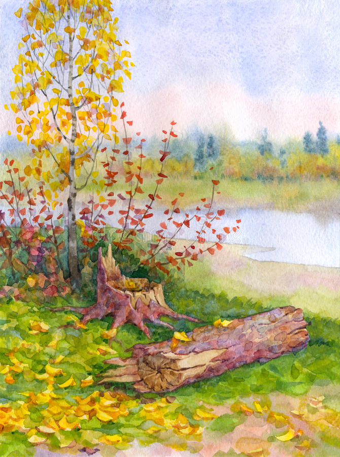 Jonge de herfstberk dichtbij een gevallen boom vector illustratie