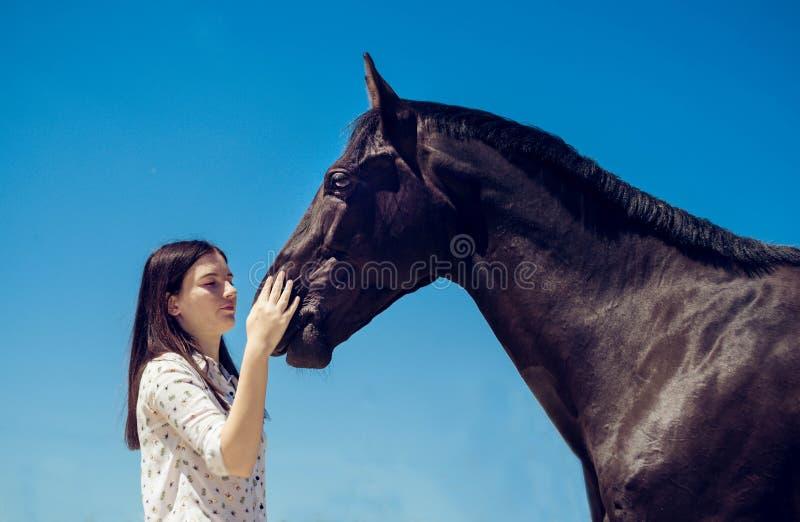 Jonge donkerbruine schoonheid die pret met paard hebben Zonnige dag, blauwe hemel als achtergrond Mooie vrouw en zwarte hengst stock fotografie