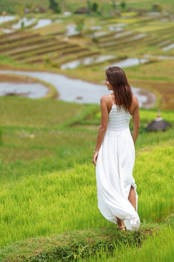 Jonge donkerbruine vrouw die haar draaien het achter stellen tegen de achtergrond van padievelden stock afbeelding