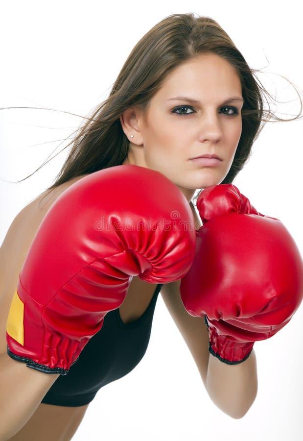 Jonge donkerbruine vrouwelijke bokser royalty-vrije stock afbeelding