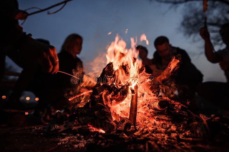 Jonge en vrolijke vrienden en gebraden gerechtheemst die dichtbij vuur bij nacht zitten stock fotografie