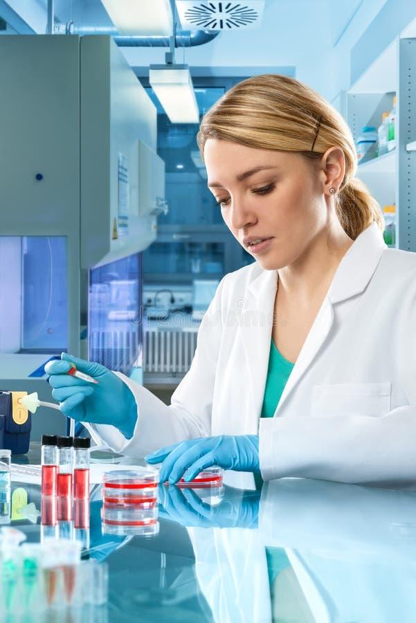 Jonge energieke vrouwelijke technologie of de wetenschapperwerken in laboratorium stock afbeeldingen