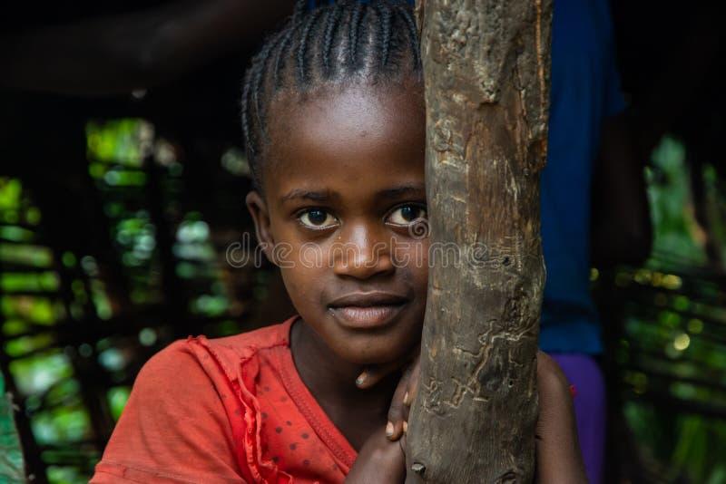 Jonge Ethiopische meisjesportret royalty-vrije stock foto