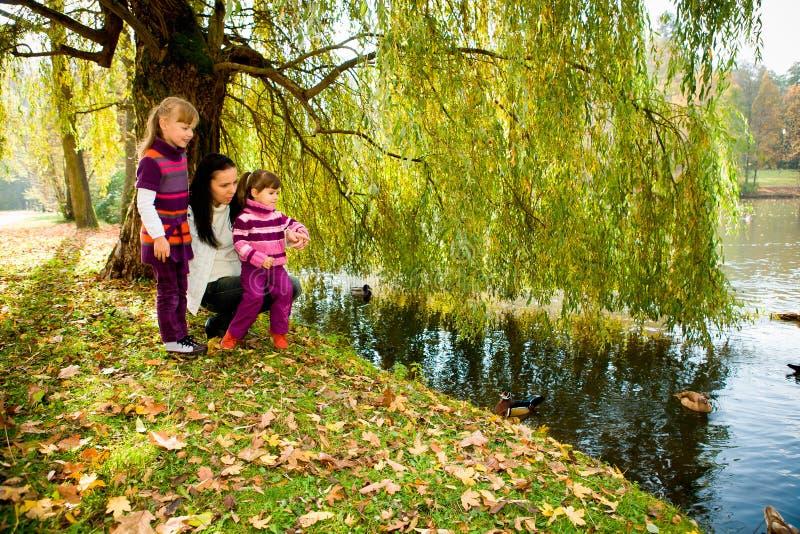 Jonge familie in het de herfstpark royalty-vrije stock afbeeldingen