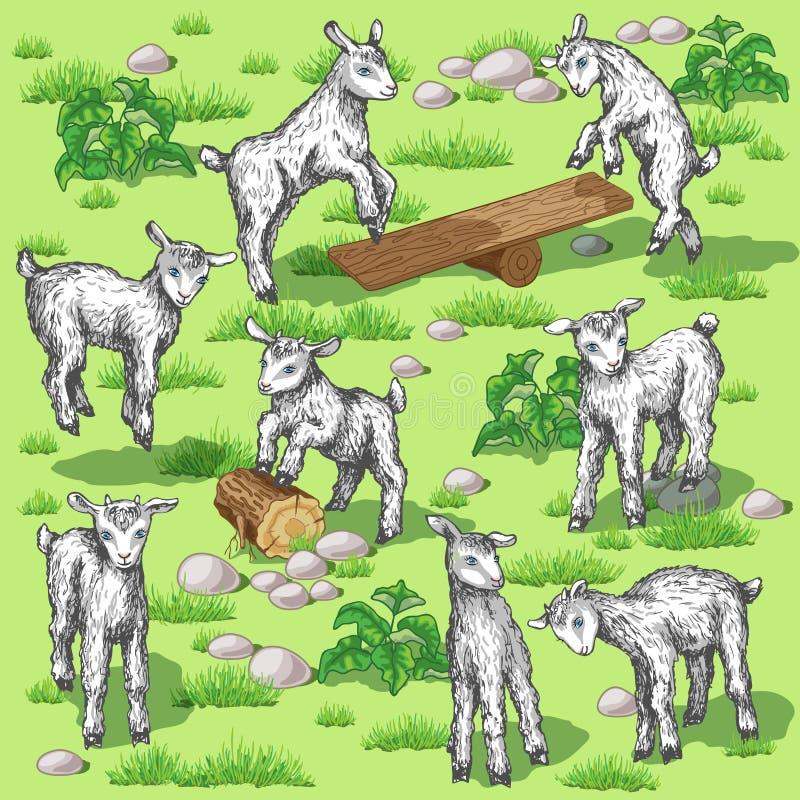 Jonge geiten royalty-vrije illustratie