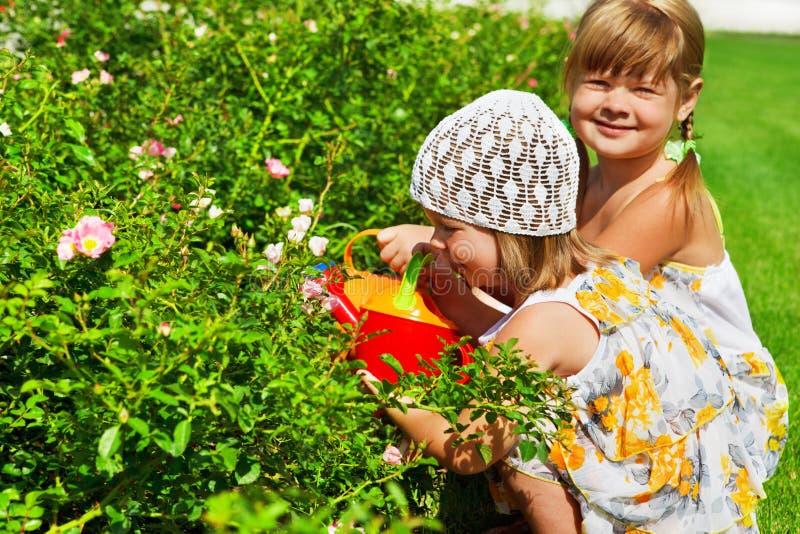 Jonge geitjes in de tuin royalty-vrije stock afbeeldingen