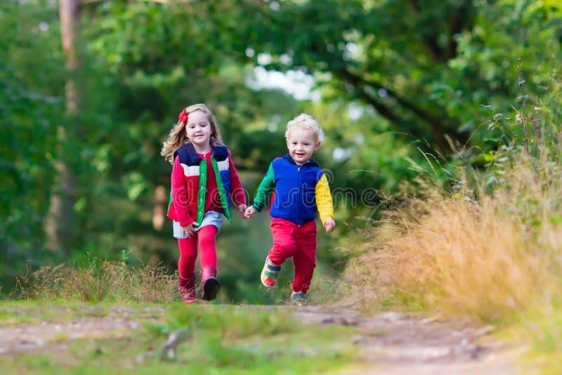 Jonge geitjes die in de herfstpark wandelen stock afbeeldingen
