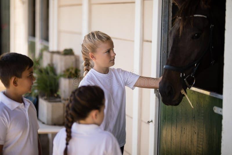 Jonge geitjes die het bruine paard in de stal bekijken royalty-vrije stock foto's