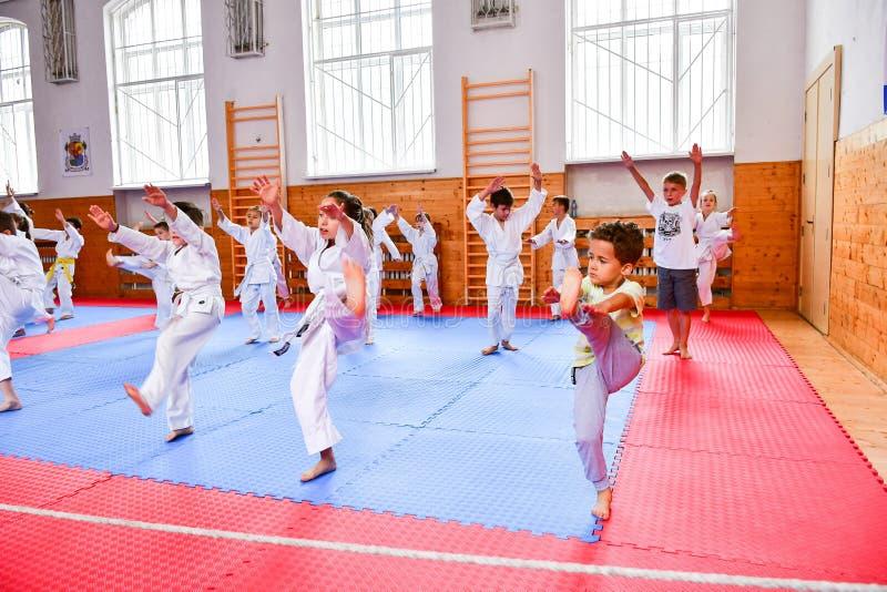 jonge geitjes die Karate opleiden stock foto