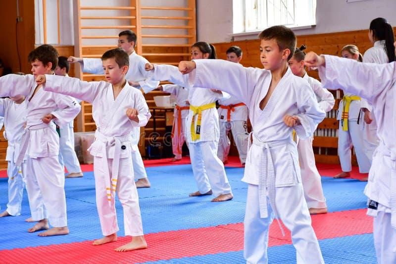 jonge geitjes die Karate opleiden royalty-vrije stock foto's