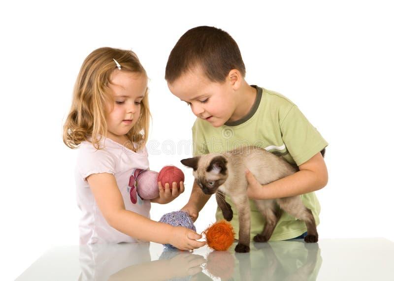 Jonge geitjes die met hun kat spelen stock afbeelding