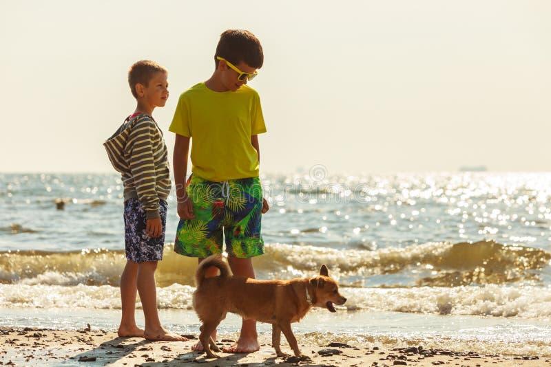 Jonge geitjes die met zijn hond spelen royalty-vrije stock fotografie