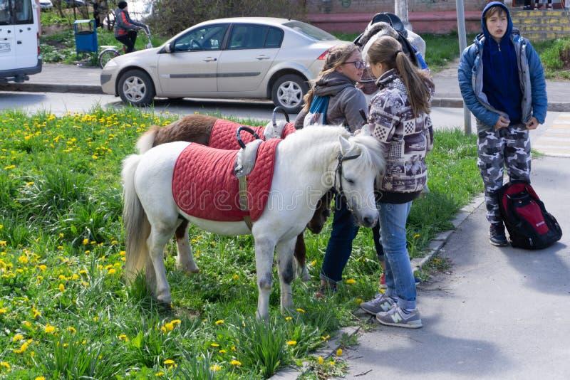 Jonge geitjes die poney in de bergen van Alpen berijden De vakantie van de familielente op paardboerderij in Oostenrijk, Tirol De stock foto's