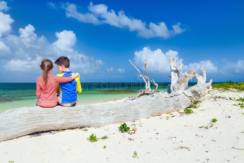 Jonge geitjes die pret hebben bij strand stock foto's