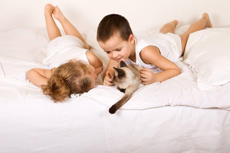 Jonge geitjes die pret met een katje hebben royalty-vrije stock foto