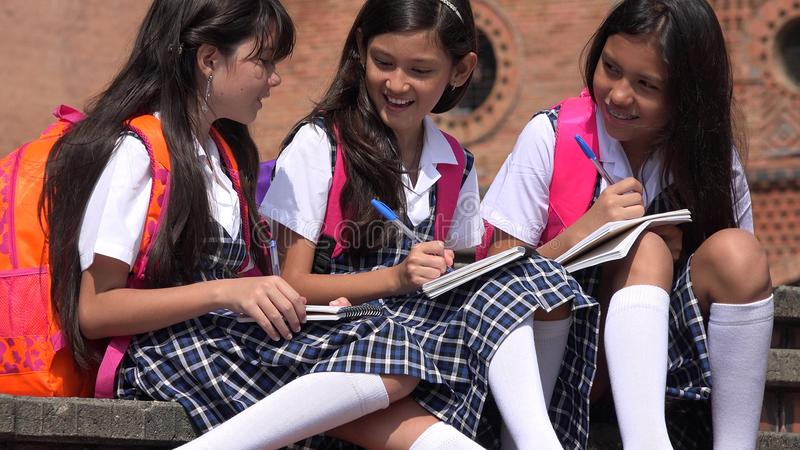 Jonge geitjes die Schooluniformen dragen stock foto