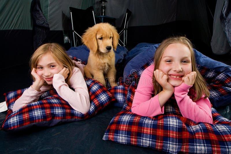 Jonge geitjes en een puppy in een tent stock afbeelding