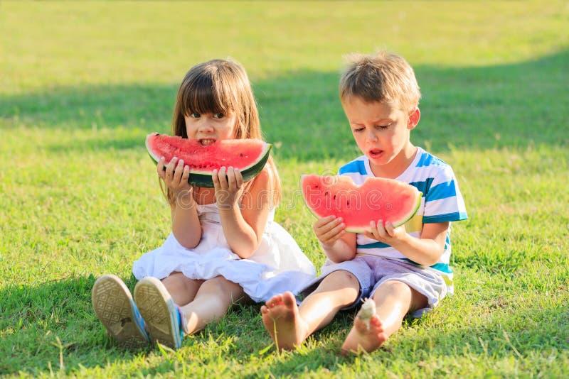 Jonge geitjes en watermeloen stock foto's