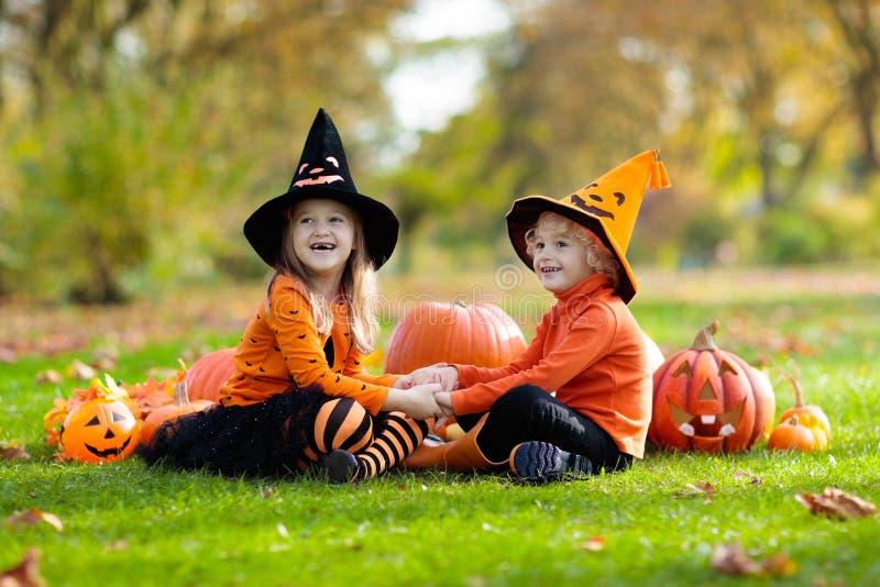 Jonge geitjes met pompoenen in Halloween-kostuums stock foto