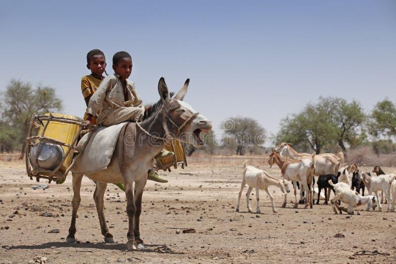 Jonge geitjes op een ezel in Afrika royalty-vrije stock foto's