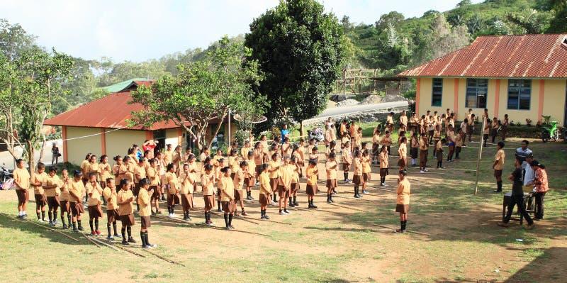 Jonge geitjes in Pramuka stock afbeelding