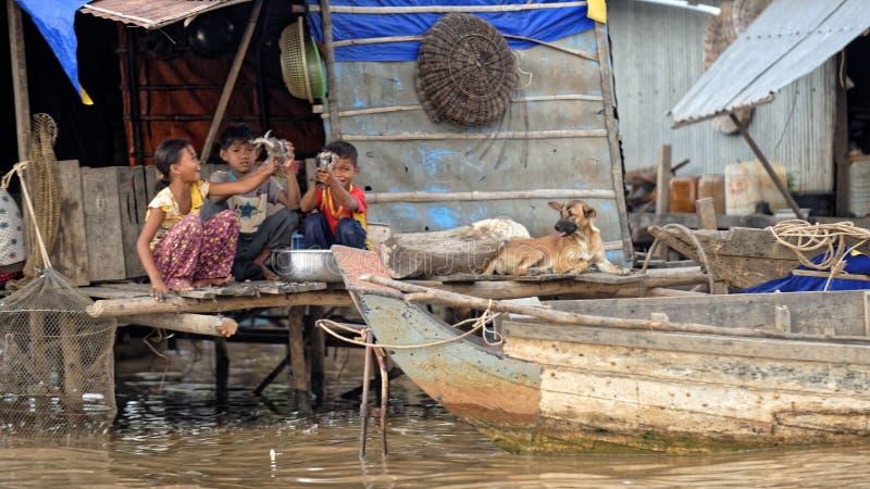 Jonge geitjes thuis, Tonle-Sap, Kambodja stock afbeelding